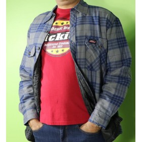 کاپشن مدل پیراهن مردانه دیکیز Dickies ca01095-2